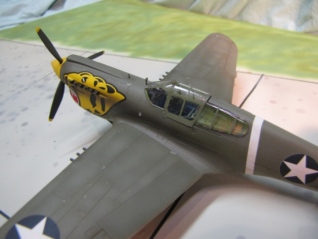The P-40D had 4 x .50 machine guns.  The British wanted more, so Curtiss switched to 3 x .50 in each wing.  The Army Air Force called this version the P-40E.